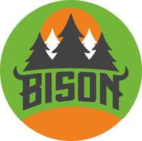 Bison_logo_1_small